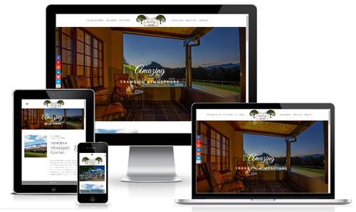 Click to go to website
